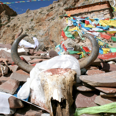 11-Tibet-diapo