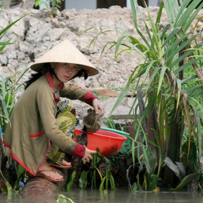 24-Vietnam-diapo