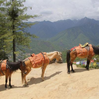 Bhutan-123
