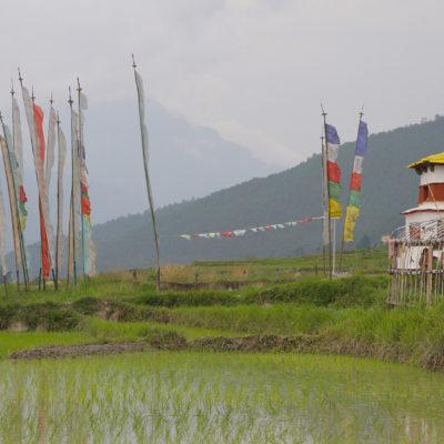 Bhutan-63